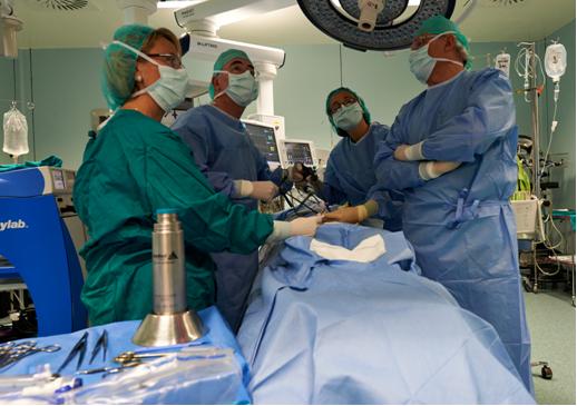 A los compañeros de la Unidad de Pared Abdominal del Servicio de Cirugía General del Hospital La Fe de Valencia